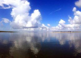Tybee Trip Tips and FAQ