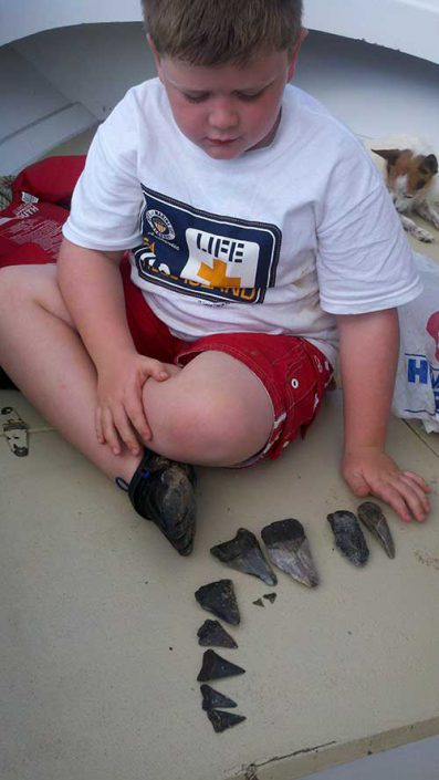 Fossil Hunting Tybee Island